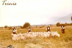 pastoris-2