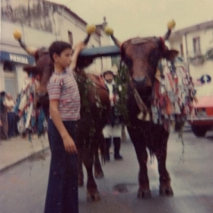 Santu Sidoru 1976